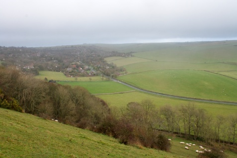 Looking over East Dean from the South Downs